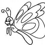 Schmetterling-5
