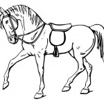 Pferde-3