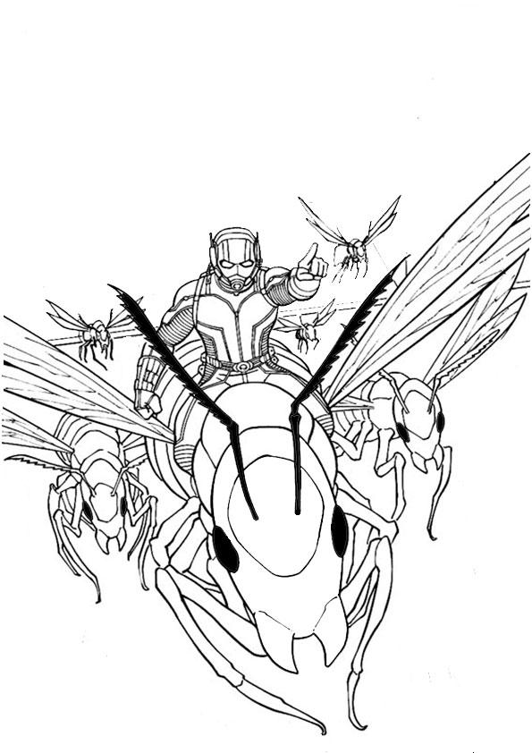 ausmalbilder ant-man-6