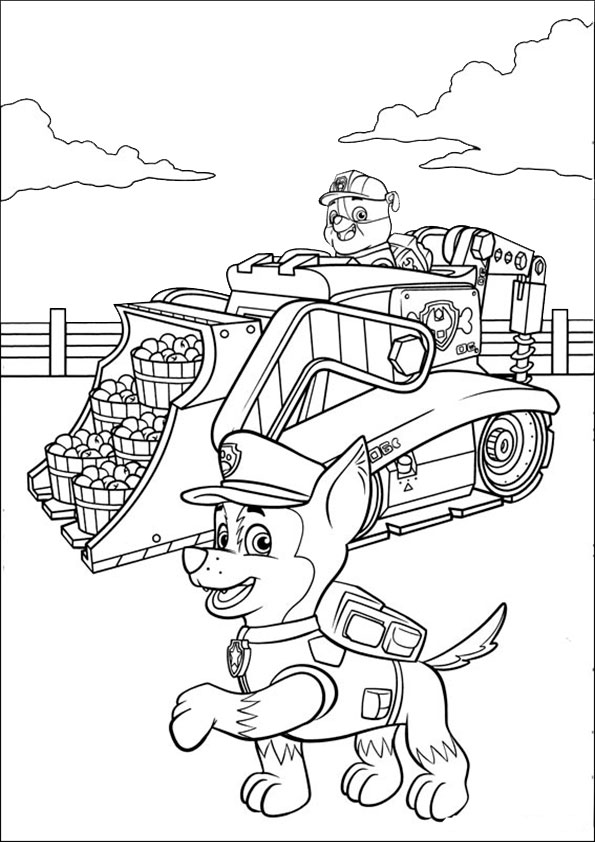 ausmalbilder  paw-patrol-11