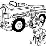 Paw-patrol-8