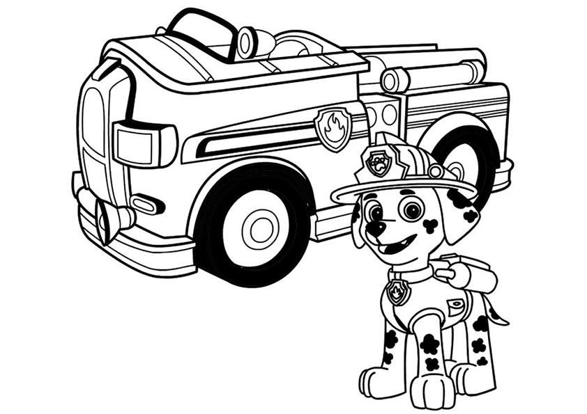 ausmalbilder beste paw-patrol-8