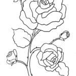 Blumen-10