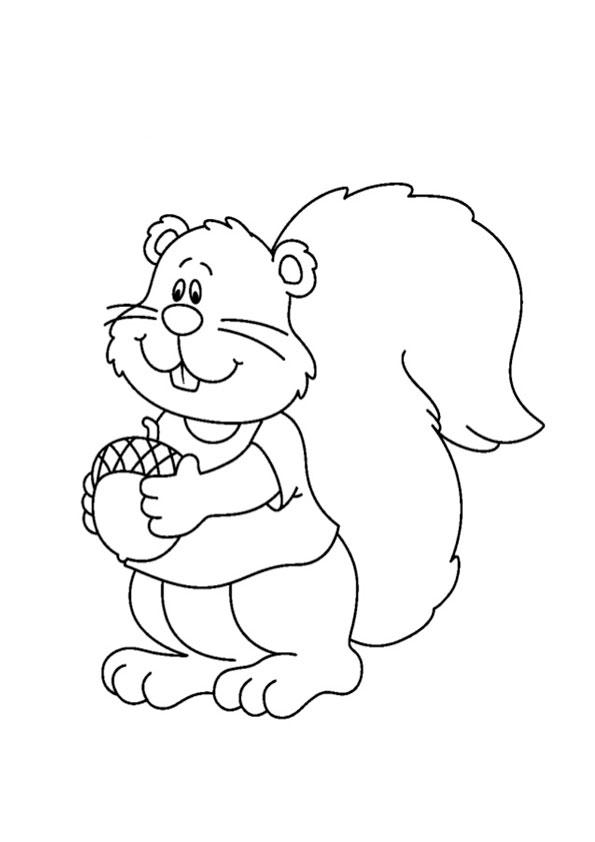 ausmalbilder beste eichhörnchen-2