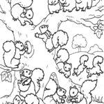 Eichhörnchen-7