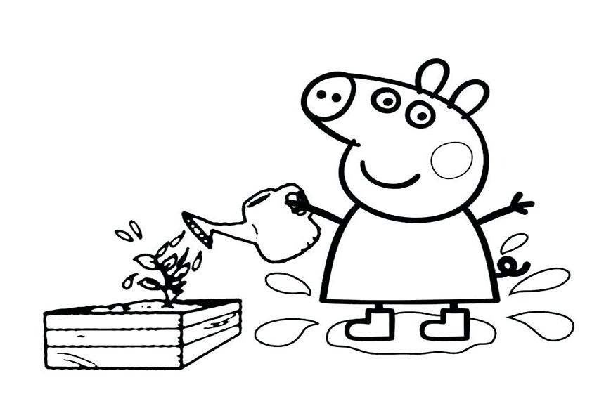 Peppa Pig 8 Beste Ausmalbilder