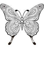Schmetterling-11
