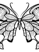 Schmetterling-6