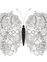 Schmetterling-13