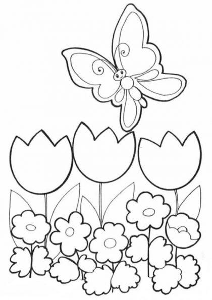 Schmetterling-15